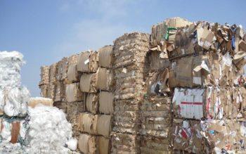 Công bố hợp quy phế liệu giấy nhập khẩu