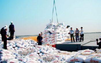 Thủ tục xin giấy phép nhập khẩu phân bón