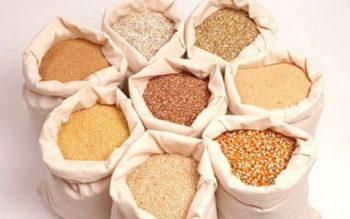 Mẫu giấy hợp quy và dấu hợp quy thức ăn chăn nuôi được quy định