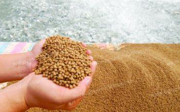 Thủ tục Đăng ký kiểm tra, xác nhận chất lượng thức ăn chăn nuôi, thủy sản nhập khẩu
