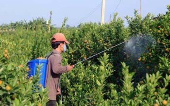 Nông dân vay mua máy nông nghiệp đang bị làm khó?