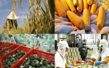 Truy xuất nguồn gốc, thu hồi và xử lý nông lâm sản mất an toàn thực phẩm