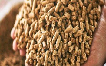Từ ngày 1/7/2020, áp dụng 3 hình thức công bố hợp quy với thức ăn chăn nuôi